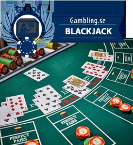 jämför casino