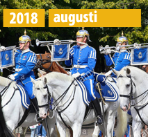 Nya Online Casinon Augusti 2018
