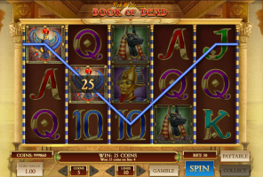 The Book of Dead Slot