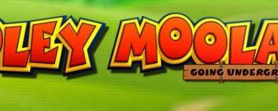 Yggdrasil har släppt sin senaste YG Masters Addition: Moley Moolah